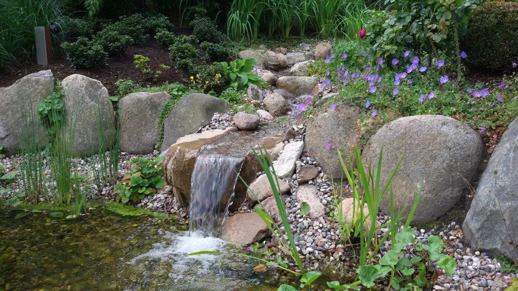 Wasser in Ihrem Garten